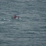 Prey-mapping boat