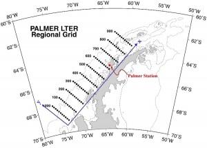Palmer LTER Grid