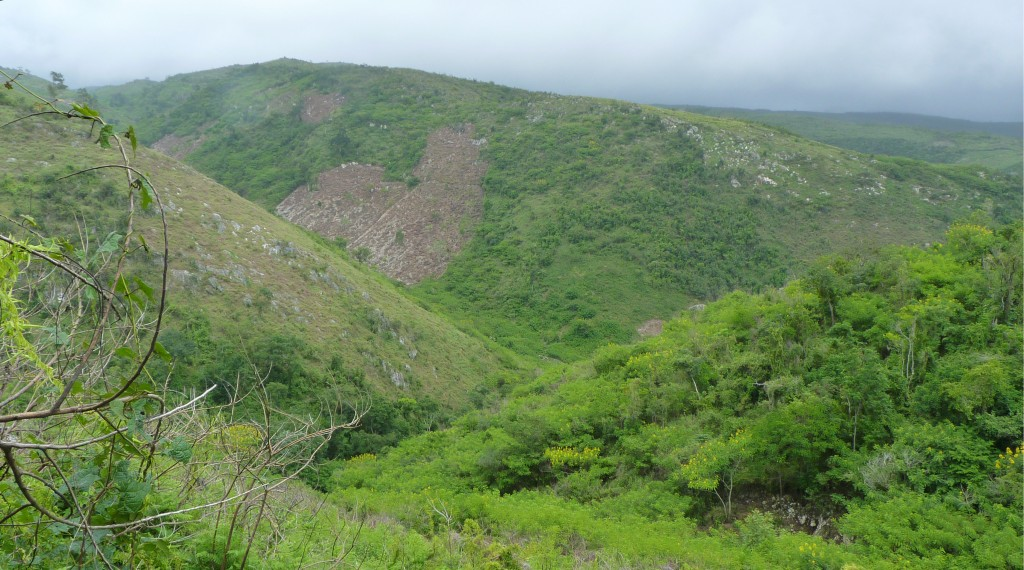 This landscape looks like Haiti, but is actually part of a Dominican National Park