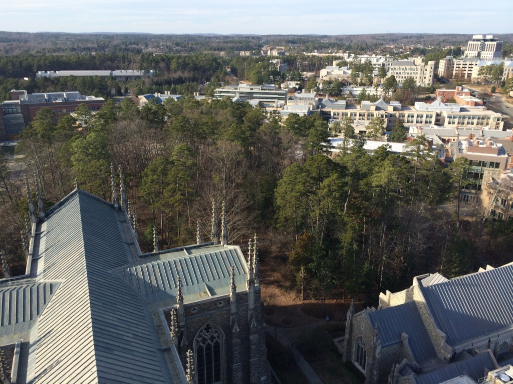 Chapel Woods as seen from atop Duke Chapel