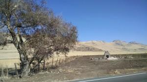 California drive from San Francisco Bay Area to Fresno