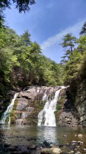 Laurel Canyon Falls, Tennessee (credit: Janet Larsen)