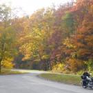 Environmental Impact of Leaf Season on the Blue Ridge Parkway