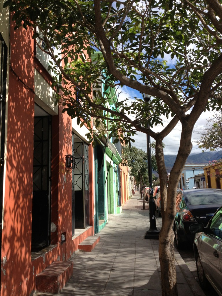 Oaxaca historic downtown