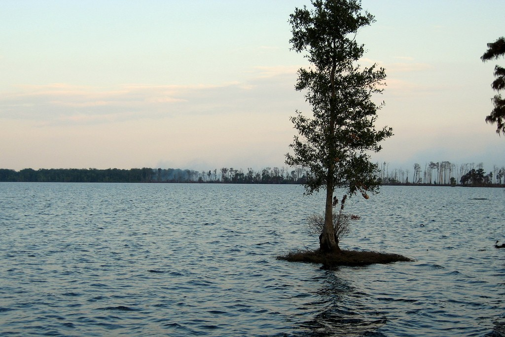 Lake Drummond by FWS