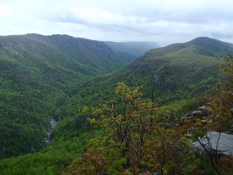 Linville Gorge Wilderness Area. Photo public domain.