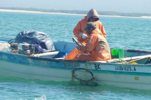 06-CDH fishers