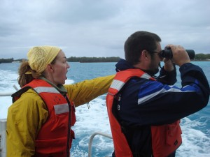 Did you see that? Lindsey and Matt look for spinner dolphins.