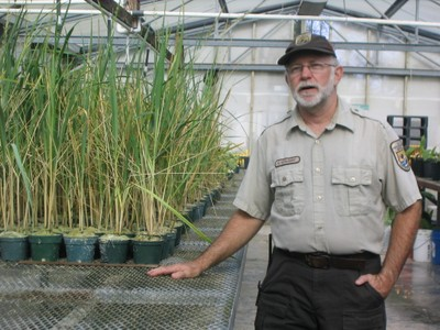Greg Schubert of the National Fish and Wildlife Service showing us his greenhouse of native plants