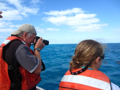Andy photographs the spinner dolphins
