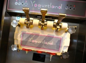 The class visits Yogurtland for the first time