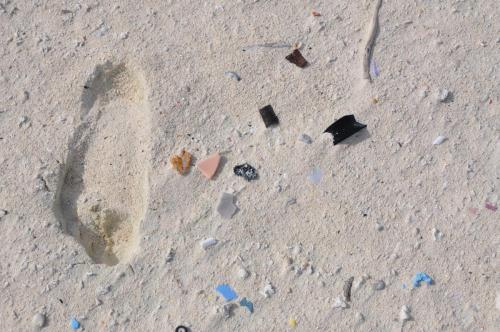 Our human impact is visible even on far away remote atolls like Midway - just a walk on the beach shows colorful bits of plastic.
