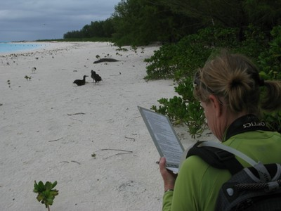 NMFS biologist, Tracy Wurth, records data on the monk seal before deciding if approaching is necessary.