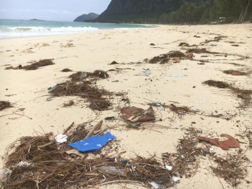 Marine Debris on Waimanalo Beach
