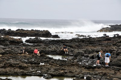 CEMs tidepooling in the volcanic rock at Ka'ena Point