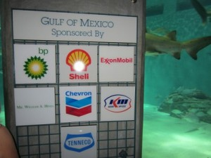 Shark exhibit at New Orleans aquarium