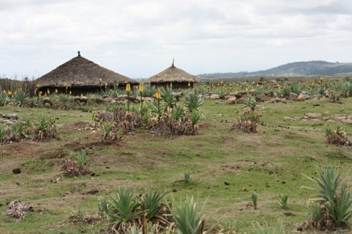 An example permanent settlements in the park