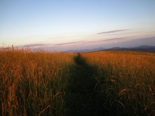 The Appalachian Trail crosses Max Patch summit, and many trails wind around the bald, including a 5-mile loop trail that offers excellent views of the mountain and surrounding area.