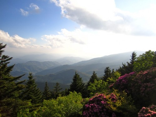 View from the top of Grassy Ridge Bald