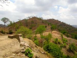 The border of Kumbhalgarh National Forest