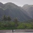 Moloka'i: Sneaky Wild
