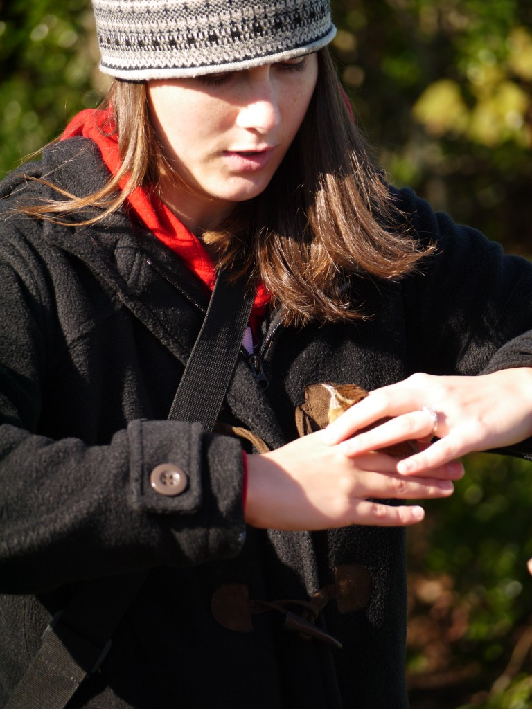 outdoor devil bird banding