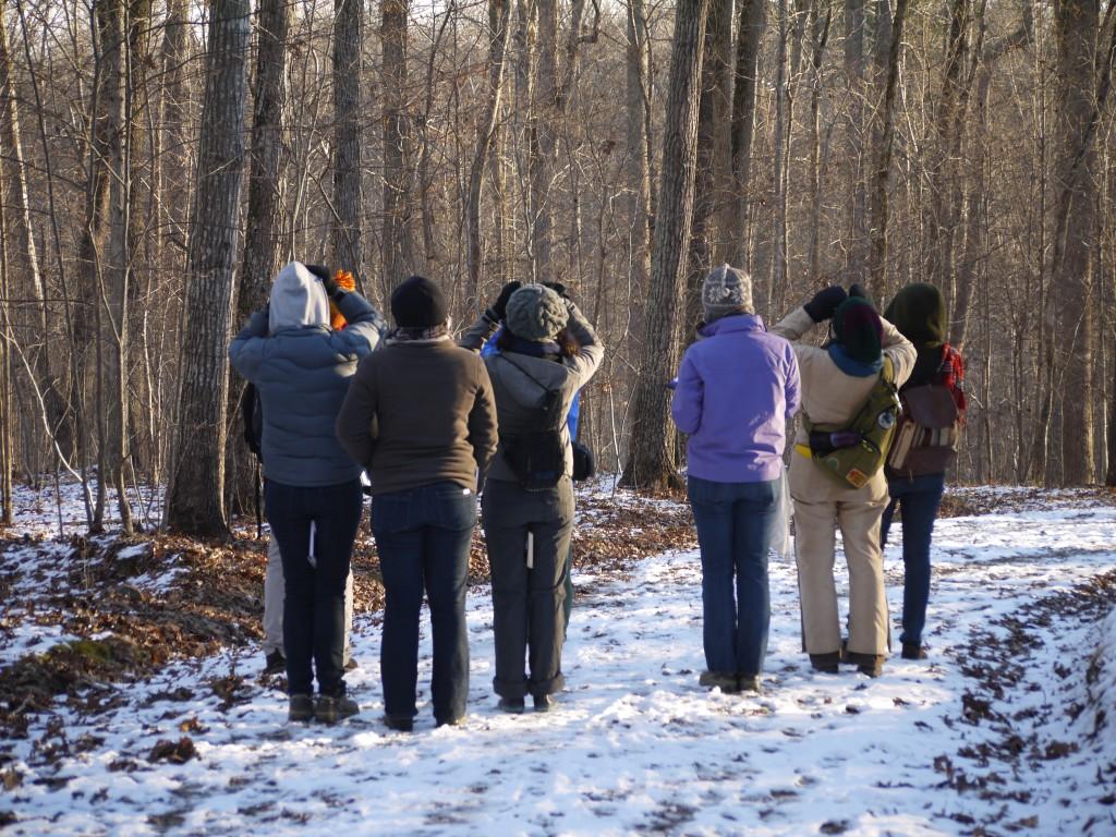 widlife surveys outdoor devil