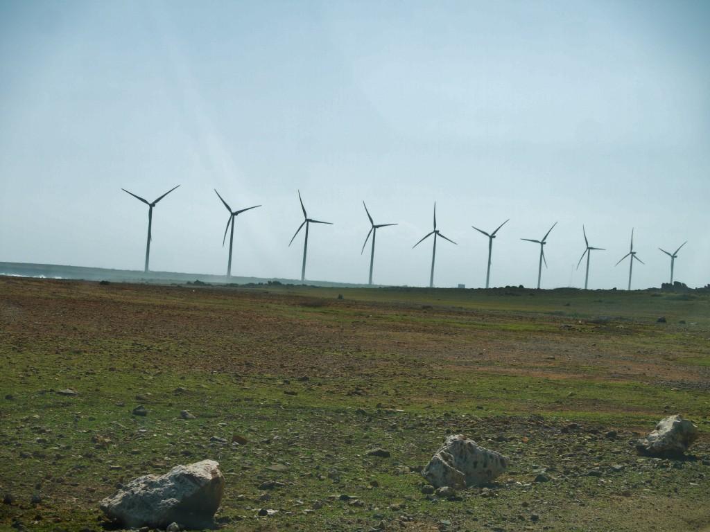 outdoor devil carbon windmills