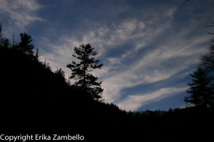 linville gorge, sunset, wilderness, tree, forest, nature, silhouette