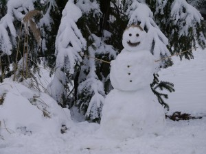 duke gardens, snow, winter, snowman