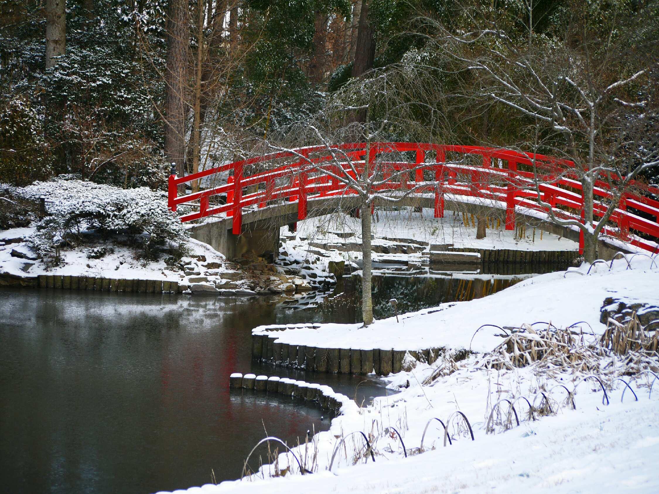 duke gardens, duke, snow, winter