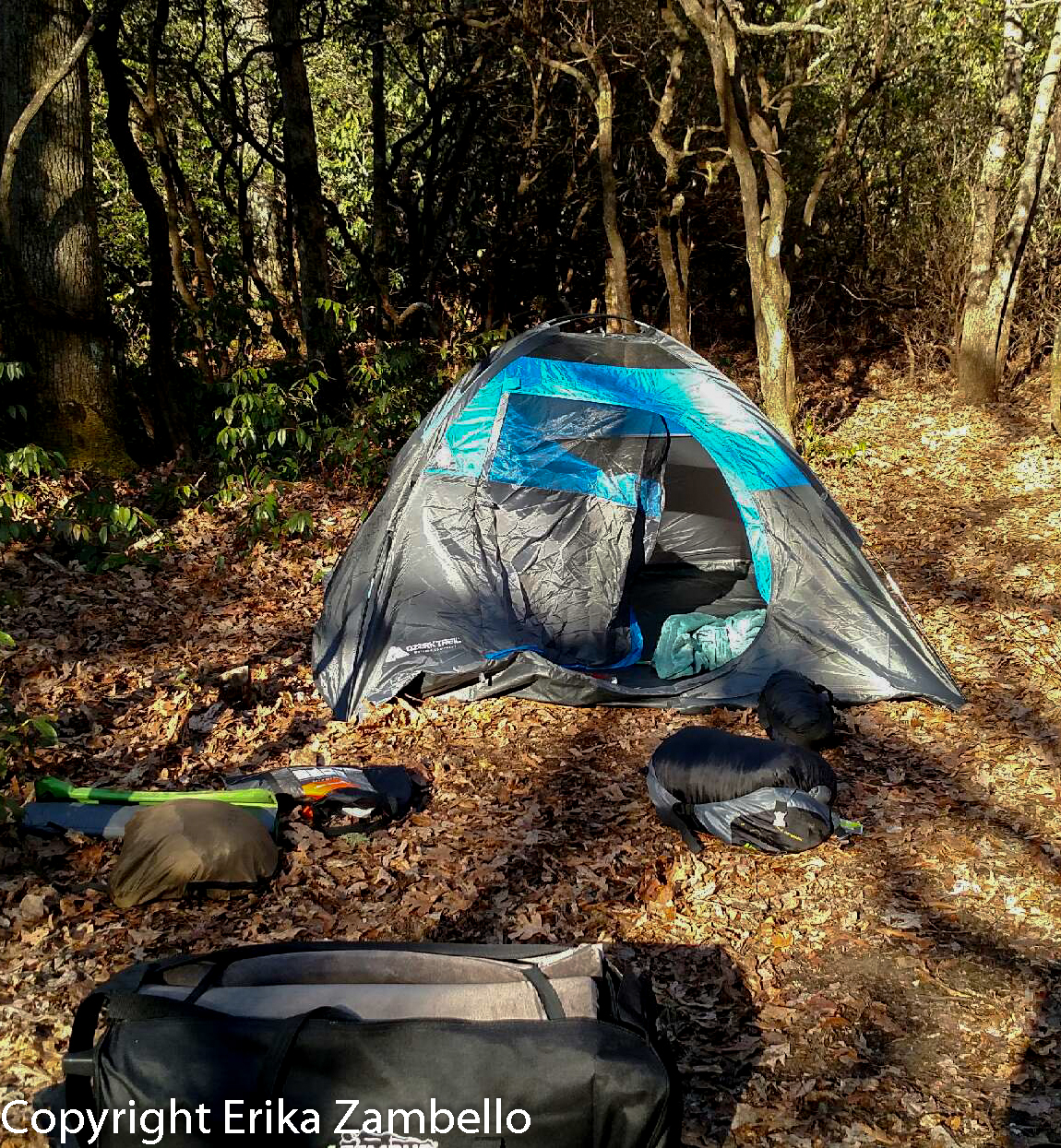 camping, fishing, pisgah, forest, north carolina