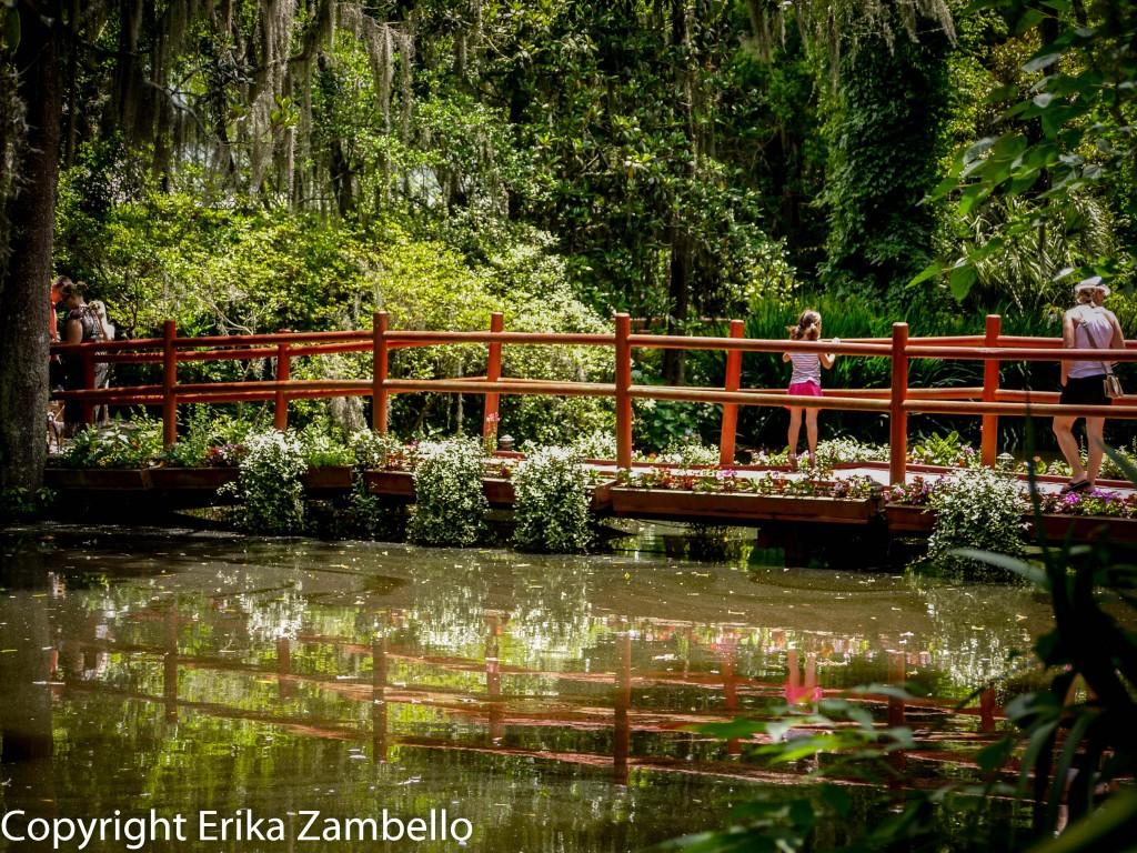 bridge, south carolina, charleston, gardens