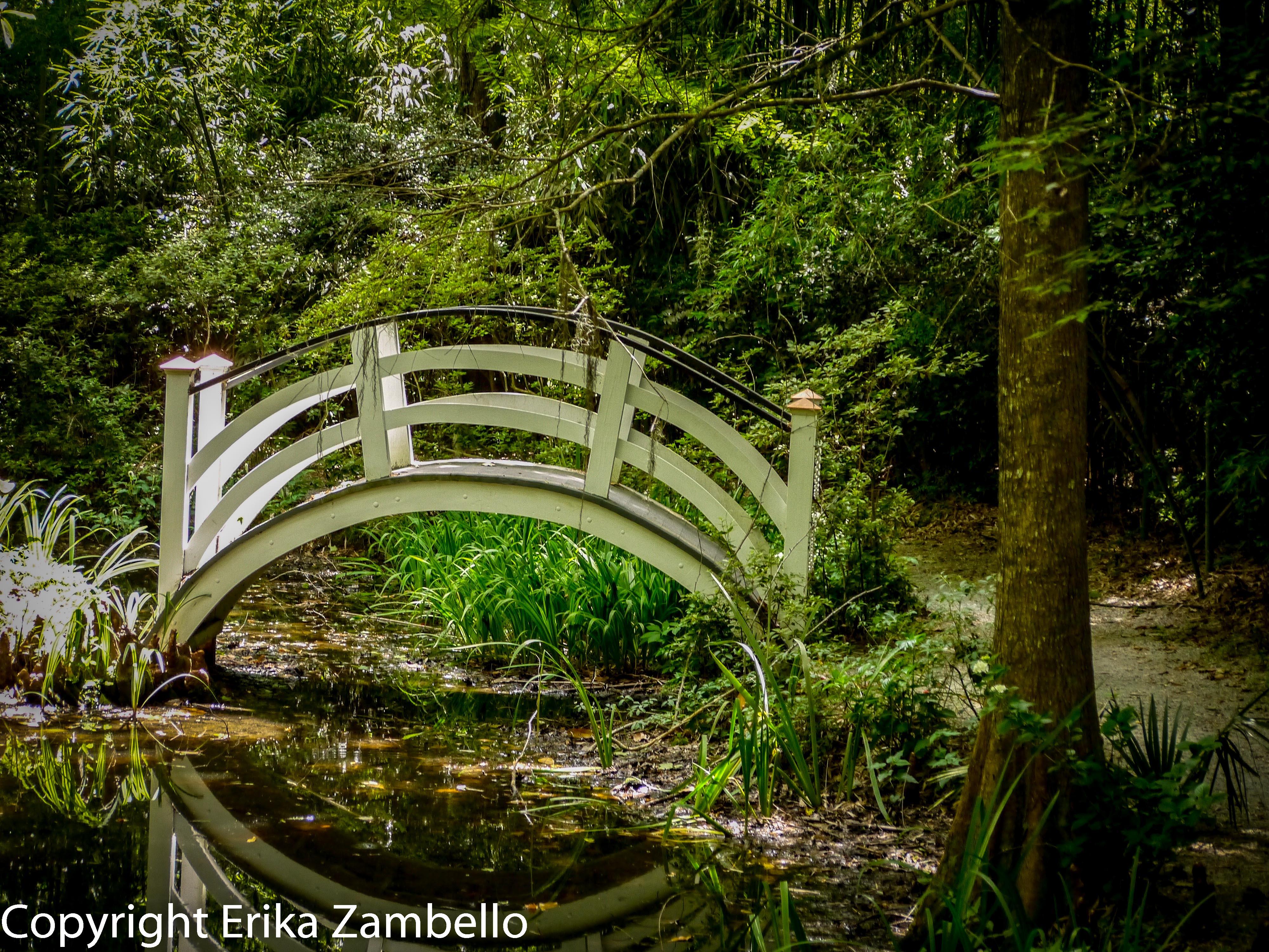 magnolia garden, bridge, south carolina