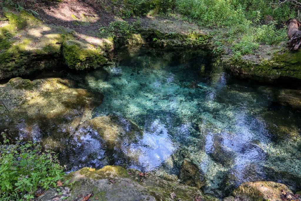 florida, spring, water