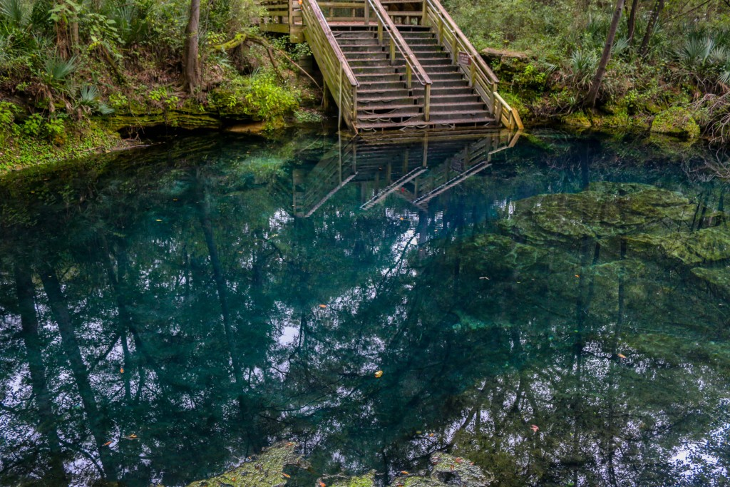 florida, springs, water