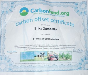 carbon fund, offset