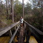 florida national scenic trail, nature, hiking, florida