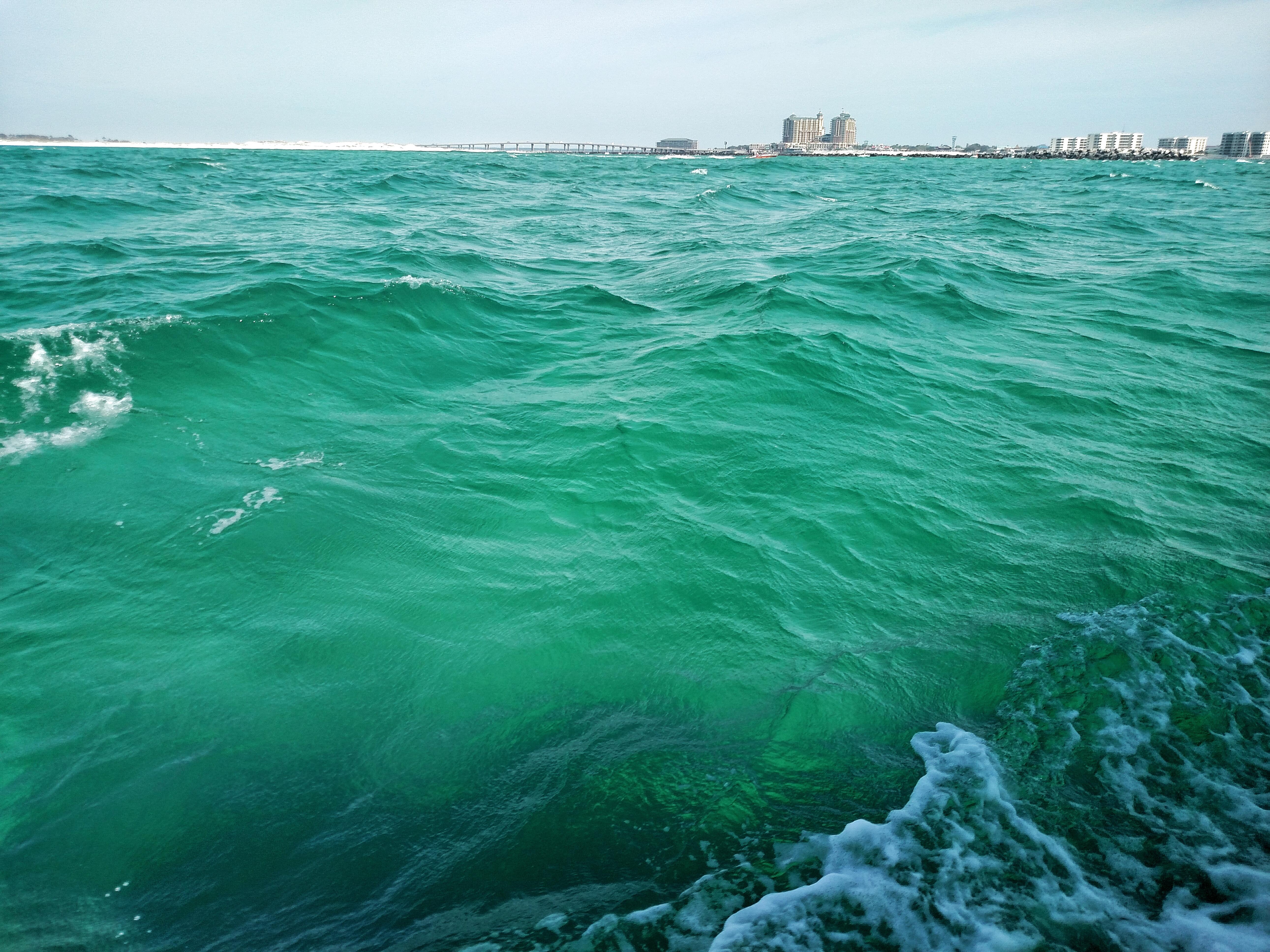 Gulf to Table, florida, emerald coast