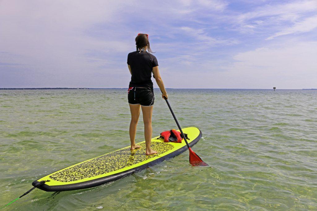 nature, paddle, paddleboard, florida