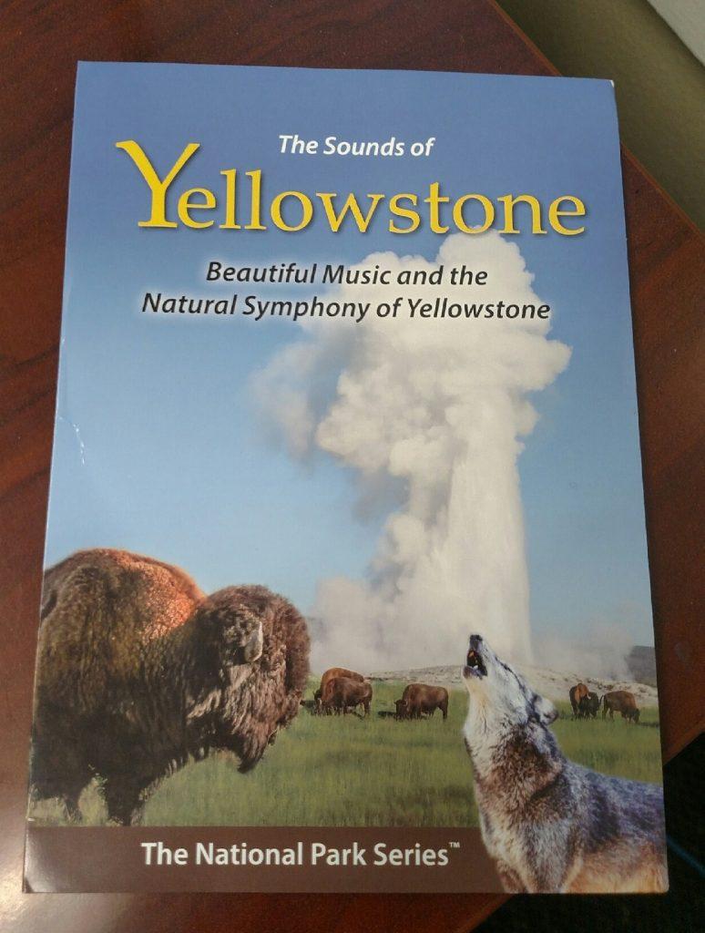 yellowstone, nature, charity