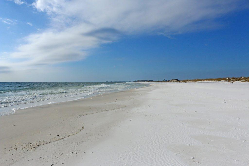 beach, florida, nature