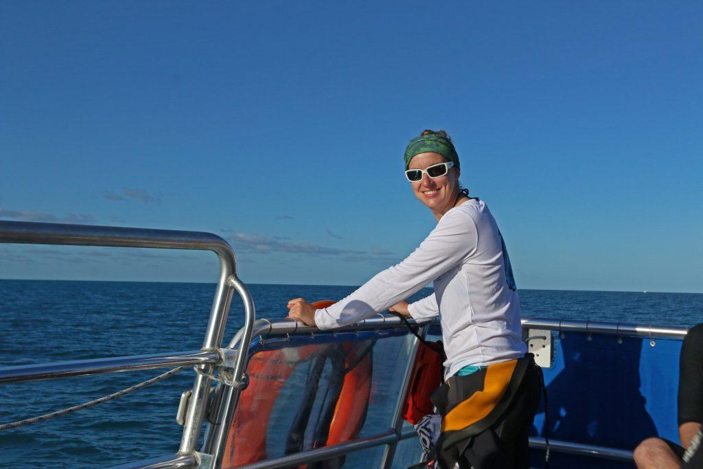 florida, nature, landscape, snorkeling