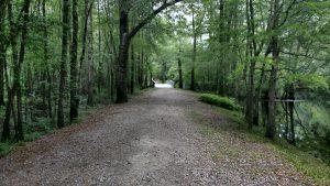 national park, national battlefield, travel, nature, birding