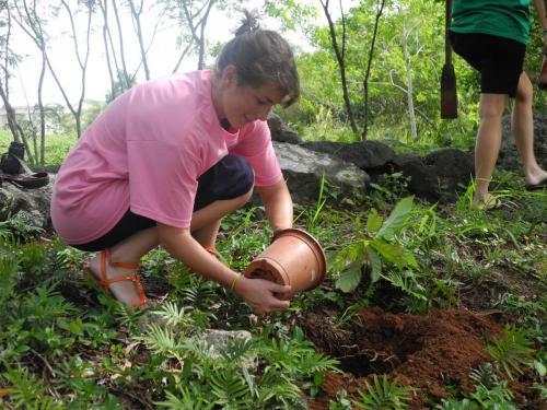 Community service in Melekeok state