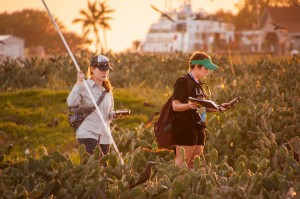Rebecca Cope MEM'16 and Kara Shervanick MEM'16 doing vegetation surveys in the colony.