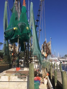 Trawlers docked for winter repairs at Snead's Ferry