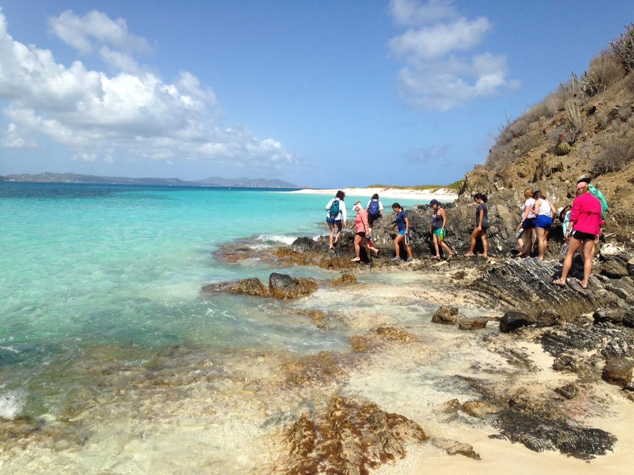 St Croix Buck Island Reef National Monument Sea Turtles
