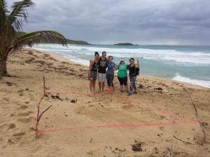 Second leatherback nest we found on Brava!
