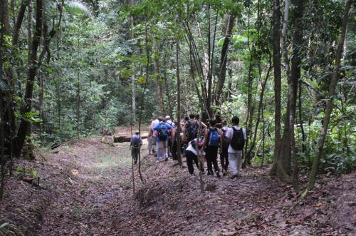 Matura Forest Howler Monkey Hike